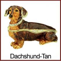 Dachshund - Tan