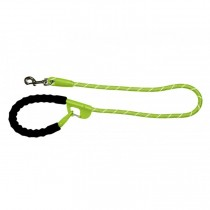 Snap and Stay dog leash Lime