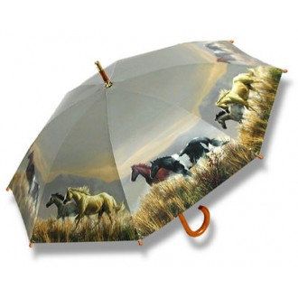 Band Of Horses Umbrella
