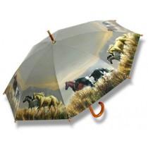 Band Of Horses Umbrella